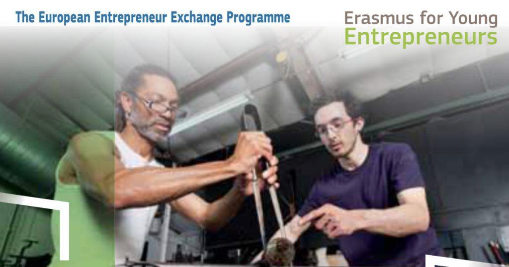 Erasmus for Young Entrepreneur | Irlanda | Helpingnetworks